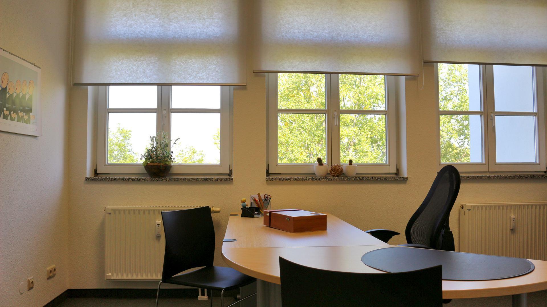 Praxis für Logopädie in Chemnitz Zimmer2